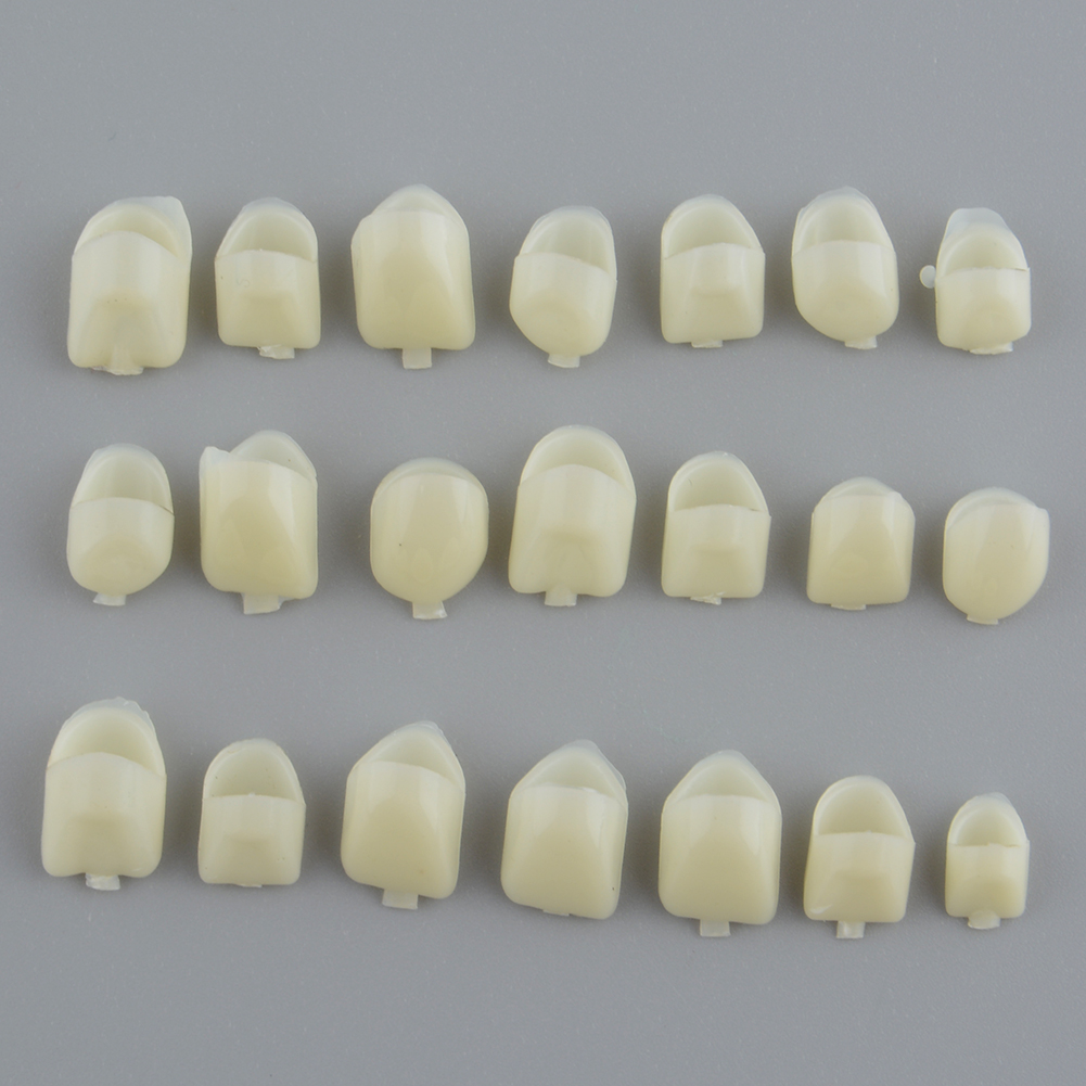 Anterior Teeth Molar Tooth Dental Temporary Crown Material