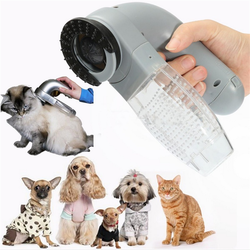 pet and groom Groom-groom is a full-service pet-grooming salon on wheels we come to you when it's convenient for you, 7 days a week most groomings are completed within 15 hours, depending on the dog's breed, size, coat and temperament.