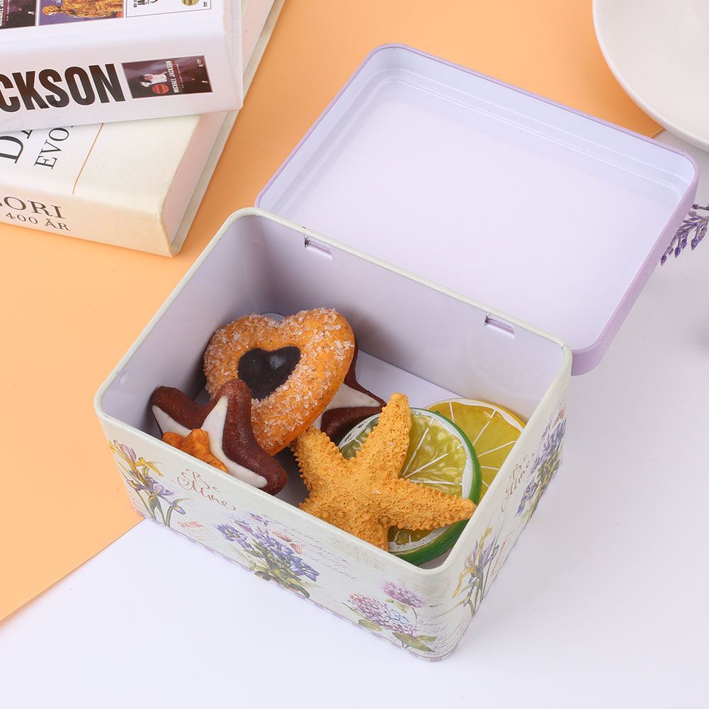 EA05-Jewelry-Tea-Candy-Box-Case-Empty-Tin-Metal-Home-Decor-Container-Storage