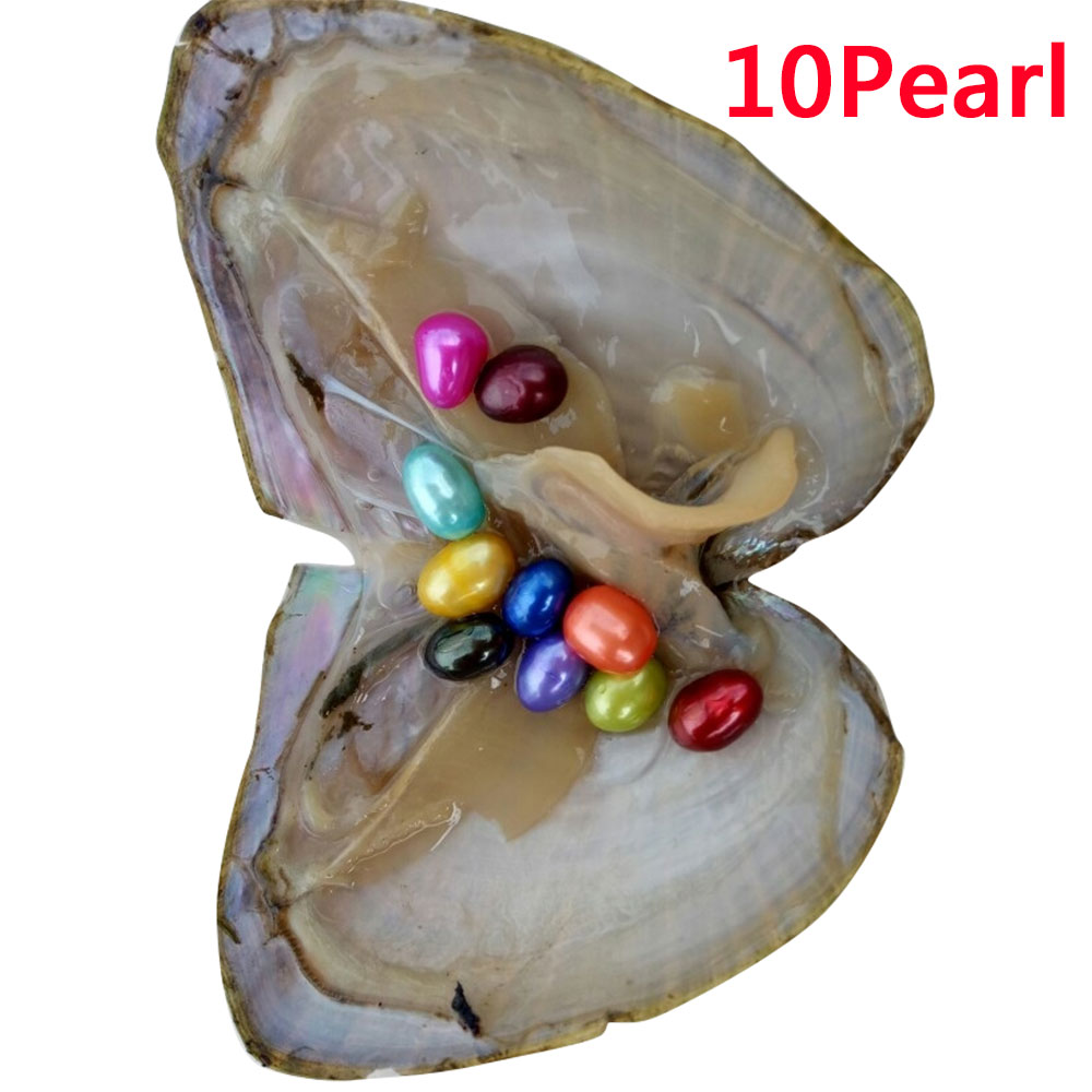 FB46-10PCS-amp-20PCS-AKOYA-OYSTERS-PEARLS-WITH-6-8MM-Rainbow-Color-Mix-WOMEN-GIFT